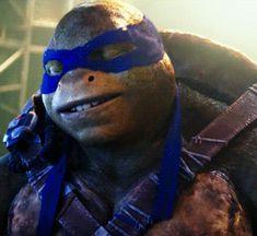 Ninja Turtles 2014, Ninja Turtles Movie, Ninja Turtles Art, Cute Turtles, Teenage Mutant Ninja Turtles, Tortugas Ninja Leonardo, Turtles Forever, Tmnt Leo, Tmnt Girls