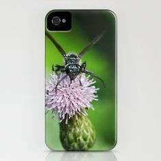 Bee and a flower iPhone Case by Captive Images Photography - $35.00