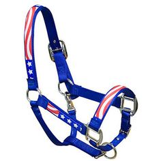 Wow... This is so American... Halter tack