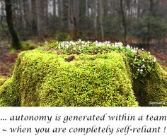 ... #autonomy is generated within a #team ~ when you are completely self-reliant !