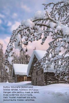 *🇫🇮 Talvi // Winter (Finland) by Asko Kuittinen ❄️ Hello Winter, Winter Love, English Village, Winter Magic, Winter Beauty, Natural Phenomena, Winter Landscape, Country Christmas, Winter Scenes