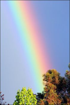 """~ God's Promise ~    """" And God said, """"This is the sign of the covenant I am making between me and you and every living creature with you, a covenant for all generations to come: I have set my rainbow in the clouds, and it will be the sign of the covenant between me and the earth."""