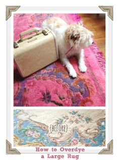 How to Overdye a Large Rug | The Rit Blog | Bloglovin'