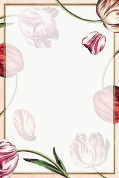 Rectangle frame on vintage tulip flower background design element | free image by rawpixel.com / manotang Cream Flowers, Tulips Flowers, Flower Background Design, Floral Logo, Flower Backgrounds, I Wallpaper, Flower Frame, Free Illustrations, Free Image