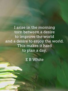 Good morning world! E. B. White quote on my photo. #colorcatstudios  Colorcatstudios.blogspot.com Colorcatstudios101.etsy.com