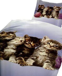 4 teilig Bettwäsche 135x200 Fotodruck Katzen Blau Grau Microfaser Bezug Kissen | eBay