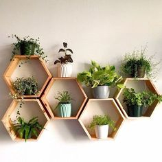 Geometric Shelves, Honeycomb Shelves, Hexagon Shelves, Decorative Wall Shelves, Geometric Decor, Decorative Objects, Narrow Wall Shelf, Room Ideas Bedroom, Decor Room