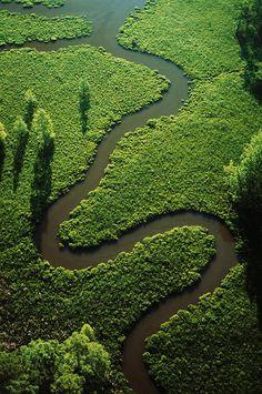 Chicahominy River.Virginia.USA  byCameron Davidson