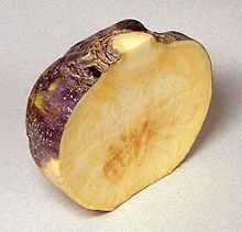 Rutabaga - Wikipedia, the free encyclopedia