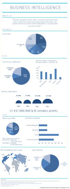 Business Intelligence [INFOGRAPHIC]