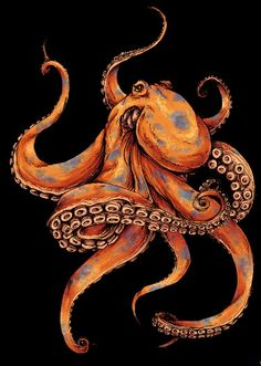 55 Eye Catching octopus Tattoos ideas for Men And Women - best octopus tattoos ideas designs - Octopus Drawing, Octopus Tattoo Design, Octopus Tattoos, Tattoo Designs, Octopus Artwork, Octopus Tattoo Sleeve, Octopus Painting, Art And Illustration, Octopus Illustration