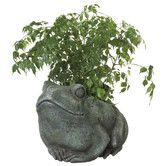 Found it at Wayfair - Frog Planter Garden Planters, Garden Art, Planter Pots, Joss And Main, Container Gardening, Spring, Greenery, Garden Sculpture, Projects To Try