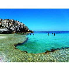 Rottnest Island, Western Australia. I dreamt that I was back in Perth.