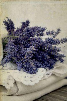 https://flic.kr/p/8jzvpr | lavender