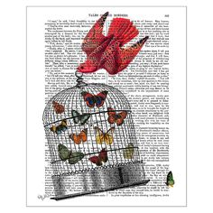 Discover the FabFunky Flying Birdcage Print at Amara