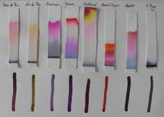 paper chromatography - Google Search