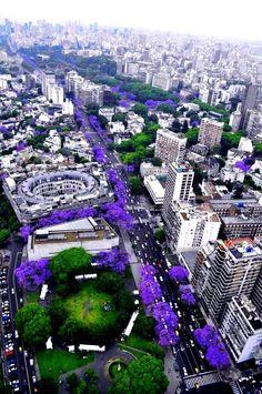 Buenos Aires, que linda sos!