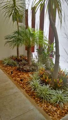 Beginner's Guide To Tropical Landscaping Design Plans – My Best Rock Landscaping Ideas Tropical Garden Design, Tropical Landscaping, Landscaping With Rocks, Front Yard Landscaping, Landscaping Design, Small Gardens, Outdoor Gardens, Scandinavian Garden, Landscape Design Plans