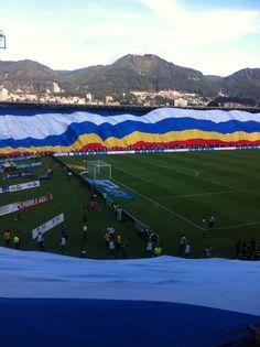 #Millos #Millonarios #labanderamasgrandedelmundo Soccer Poster, Backgrounds