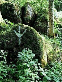Algiz ¤ Protection Rune.