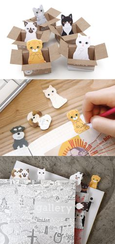 OMG these are hands down the cutest sticky notes I have ever laid eyes on! If Kitty Sticky Notes weren't enough, these come with their own little cute box house I can place them in - just like real kittens! These are adorable as a decoration for my desk, but are 100% functional too! They come in 5 styles - including the Scottish Fold kitten! I'm getting one of each and using them in my planner and notebooks as page flags! They're waiting for a new home. Will you adopt these kittens today?