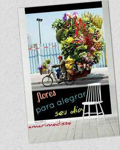 #cores #flores