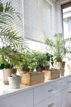 Bringing outdoors in, decoración para pisos sin terrazas - Ebom