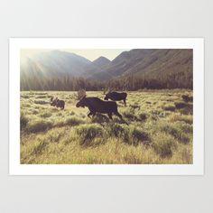 Three Meadow Moose Art Print by Kevin Russ - $16.00