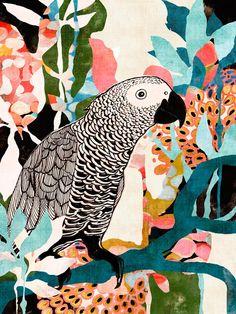 Parrot In The Jungle - Kaleidoscope Eyes