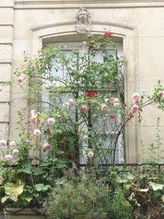 Balcon de Paris