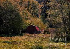 Small Red Barn by Erica Hanel Digital Art, Barn, Wall Art, Prints, Red, Poster, Posters, Warehouse, Billboard