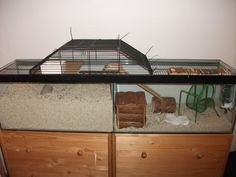 Connecting two smaller tanks, 10 gallon, into one big tank for gerbils.  Such a good idea. Use old cage parts or hardware cloth to create a pass over.
