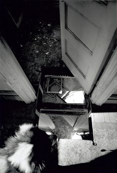 Threshole-Gordon Matta Clark, 1972