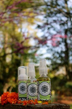 Calendula is the essential oil from the pot marigold - foaming cleanser, toner and marigold bergamot dry oil