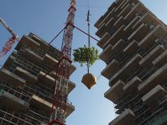 Stefano Boeri's Vertical Forest gets planted