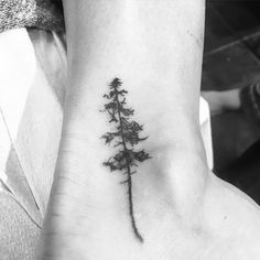 Did this tiny little redwood on April today! She sat super awesome for her first tattoo! Super fun one to do!