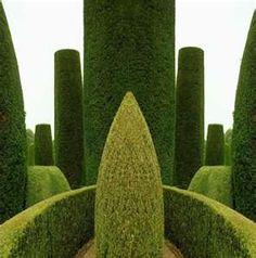 i like ..... English garden