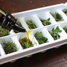 Frische Kräuter in Olivenöl einfrieren Die Balkone und Gärten sind voll mit Thymian, Basilikum, Petersilie, Rosmarin, Schnittlauch, Lav...