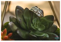 The Big Fake Wedding Austin // Austin, Texas // Creatrix Photography #thebigfakewedding #austin #weddinginspiration #weddinginspo #weddingideas #texas