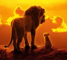 Mufasa and Simba looking at each other Lion King Simba, Disney Lion King, Donald Glover, Lion King Video, Action Wallpaper, Disney Wedding Invitations, King Picture, Lion King Drawings, Lion King Birthday