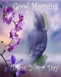 43 Best Good Morning Blessings Images Good Morning Good Morning