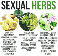 Wellness of Sexual health and wellness, points that females as well as guys must understand and also share issues Health Facts, Health And Nutrition, Health Tips, Health And Wellness, Health Fitness, Health Trends, Health Quotes, Women's Health, Healing Herbs