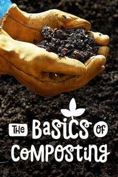 You can use compost as a soil amendment, mulch, and worm habitat. If you are striving for a healthy, productive organic garden, start composting! Learn the different composting styles and how to make your own compost here.