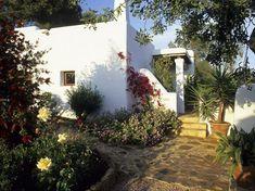 Plantas para colocar en un jardín mediterráneo. El jardín mediterráneo, sabiduría de vida
