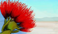pohutukawa flower such beautiful red Nz Art, Art For Art Sake, Seaside Art, Beach Art, Christmas Drawings For Kids, Stone Painting, Rock Painting, Polynesian Art, Fabric Paint Designs
