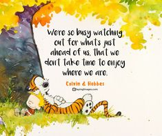 Wisdom Quotes : QUOTATION - Image : As the quote says - Description Motivational quotes – Most Inspiration Quotes With Pictures Calvin Y Hobbes, Calvin And Hobbes Quotes, Inspirational Horse Quotes, Best Motivational Quotes, Daily Quotes, Motivational Pictures, Wisdom Quotes, Me Quotes, Calvin And Hobbes
