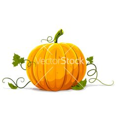 Try this DIY Pumpkin Facial at home that Dermatologist Dr. Ted Lain has shared. Preparing for fall, the right way! Pumpkin Vine, Pumpkin Vegetable, Cute Pumpkin, Diy Pumpkin, Pumpkin Carving, Pumpkin Facial, Pumpkin Cards, Paper Quilling, Make Your Own