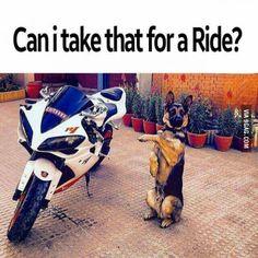 Me when a friend of mine has a new bike