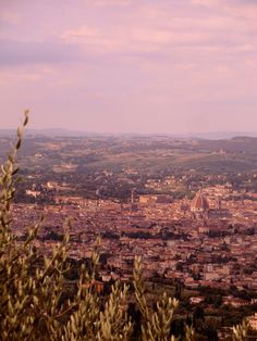 Fiesole, Italy  (overlooking Florence)