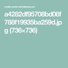 a4282df95708bd08f788f19935ba259d.jpg (736×736)